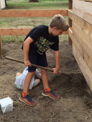 Grandson helping with small barn