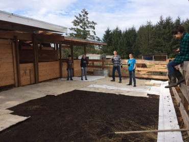 When we carpeted the corral, thinking it would keep the horses feet out of the mud