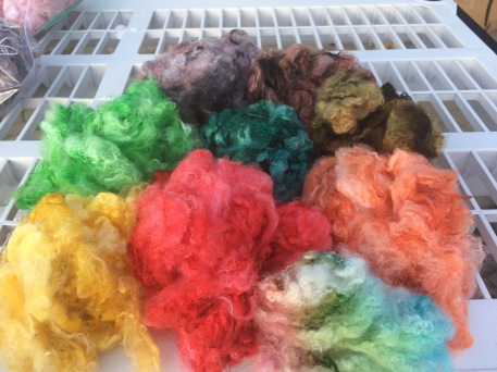 Wool dyed with food coloring